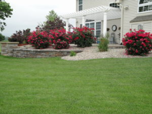 Keeping landscaping weed free with with landscape bed weed control