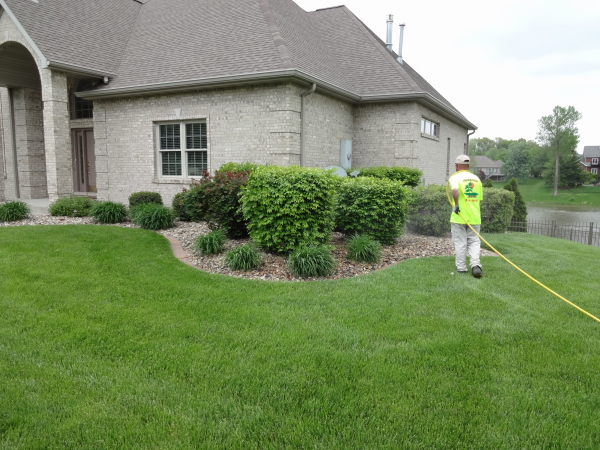 Application of Insecticide control for Ornamental Trees and Shrubs