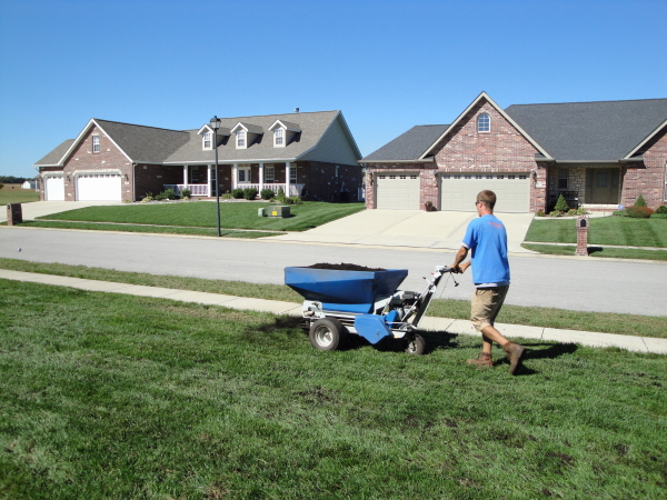 Spreading compost topdressing on a lawn after an aeration