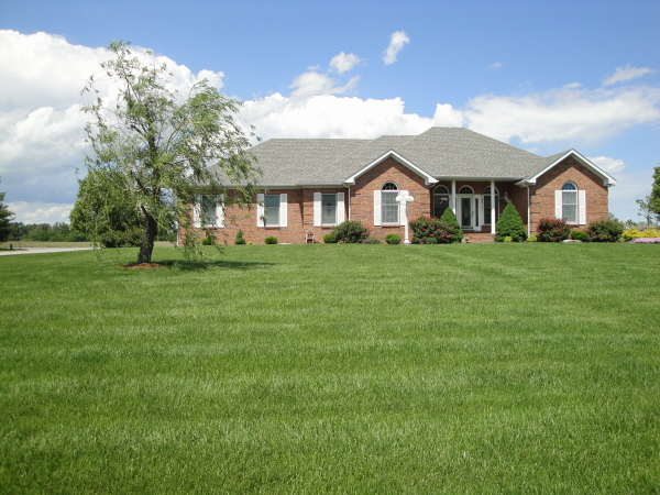 A lawn that has been supplemented with amendments
