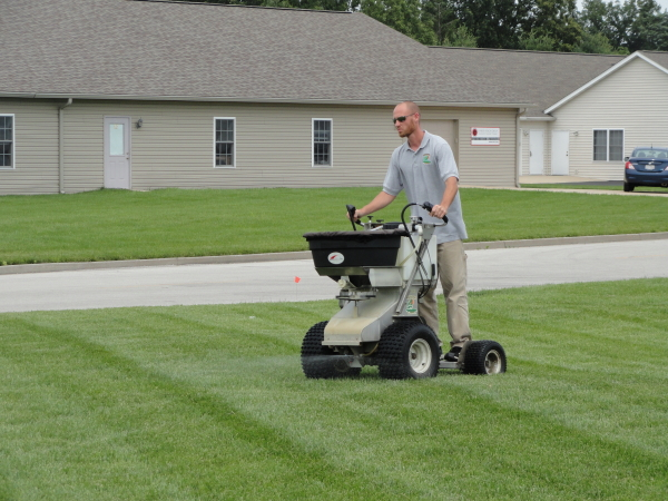 Lying Fertilizer To A Lawn When And