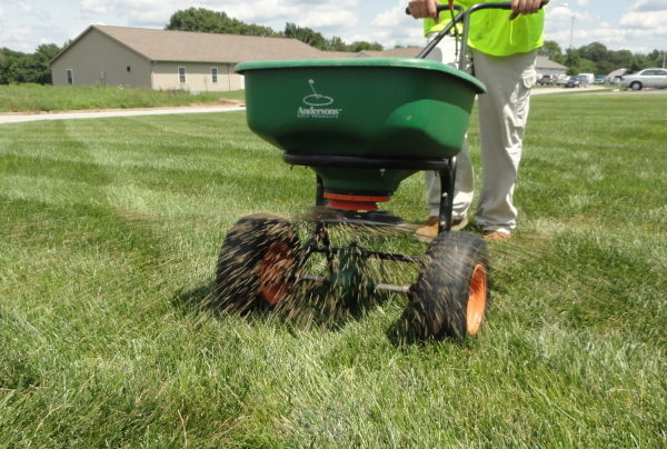 Overseeding a lawn with a push spreader