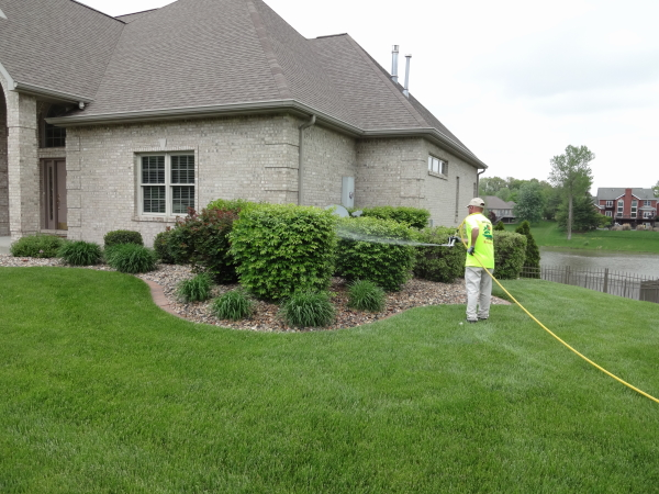 Paradise Lawns provides both contact and systemic insecticide control