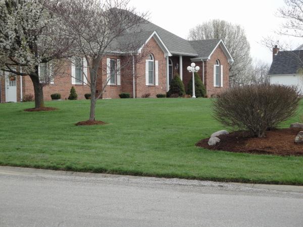 choosing a lawn care company