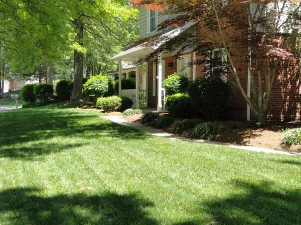 Lawn Care Services Image