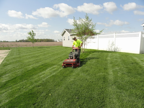 Lawn Mowing Safety Tips and Practises