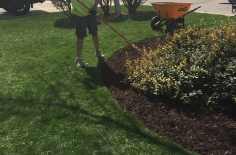 Mulch Bed Edging