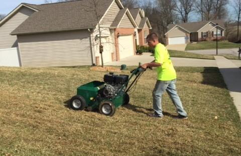 Slit seeding a lawn