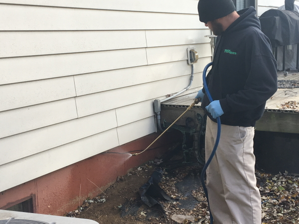 Quarterly Pest Control Application