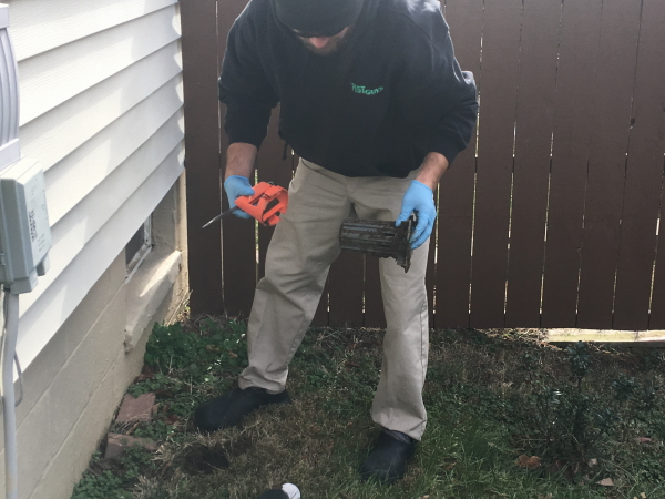 Pest Professional inspecting a termite bait station