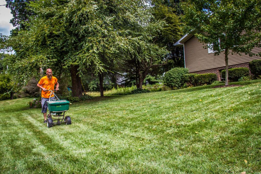 applying amendments to a lawn image