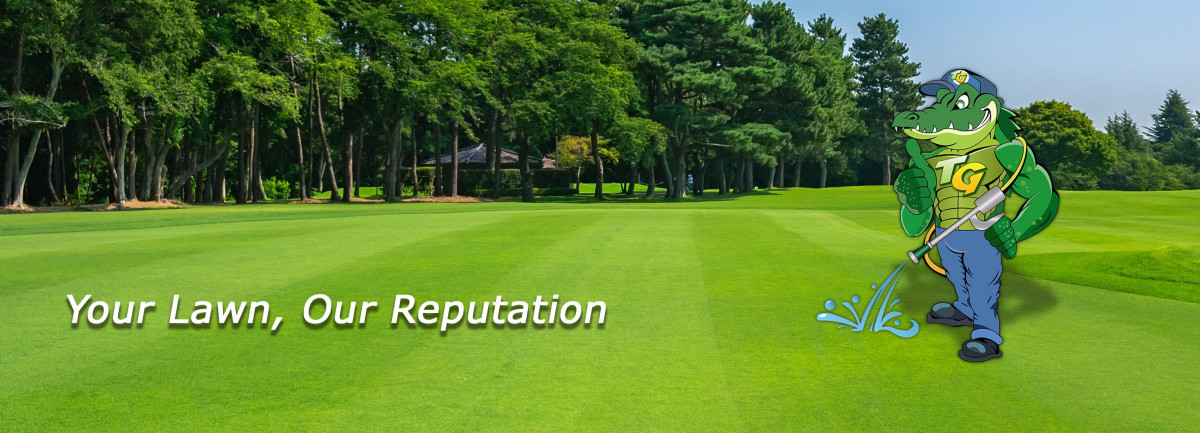 Your lawn, our reputation